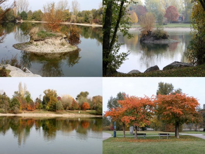 Herbst Collage 09
